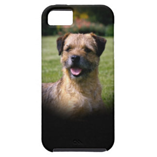 Border Terrier Case For The iPhone 5