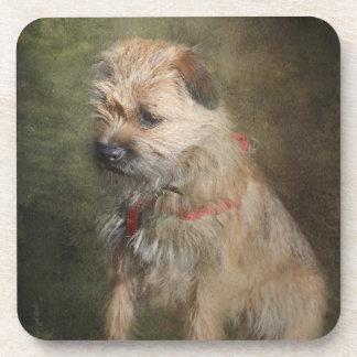 Border Terrier Coasters