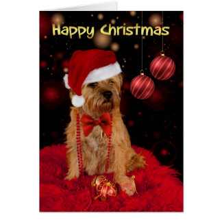 Border Terrier Dog In A Santa Hat Happy Christmas Card