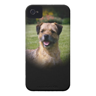 Border Terrier iPhone 4 Cases