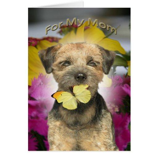 Border Terrier Mom Cards