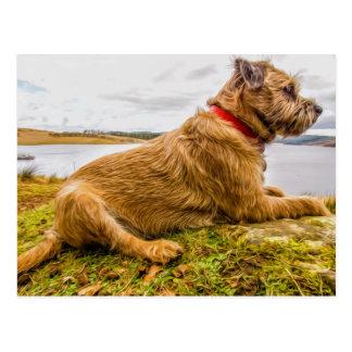Border Terrier Oil Paint Effect Printed Postcard