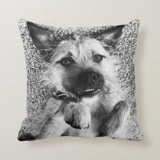 Border Terrier Pillow - I'm So Cute