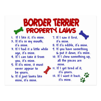 BORDER TERRIER Property Laws 2 Post Card