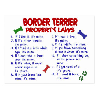 BORDER TERRIER Property Laws 2 Postcard