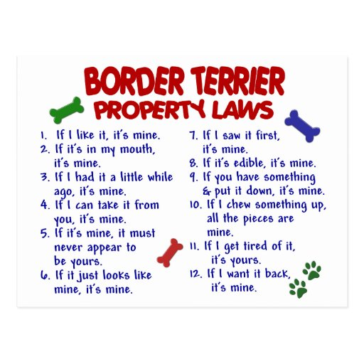BORDER TERRIER Property Laws 2 Post Cards