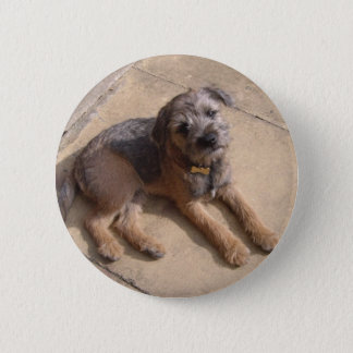 Border Terrier Puppy 6 Cm Round Badge