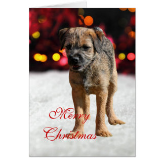 Border Terrier puppy dog custom Christmas Card