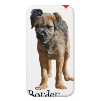 Border Terrier puppy, I love heart iphone 4 case