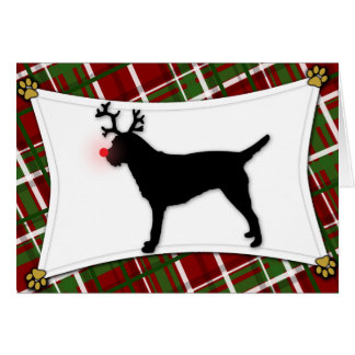 Border Terrier Reindeer Christmas Card