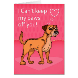 Border Terrier Valentine's Greeting Card