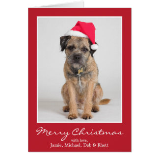 Border Terrier Wearing A Santa Hat Greeting Card