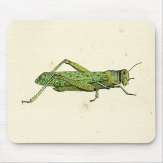 Bordered Print of Green Grasshopper Mouse Mat