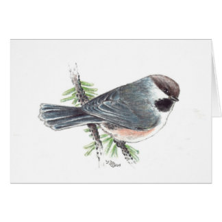 Boreal Chickadee Greeting Card