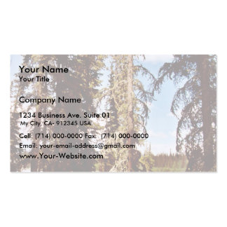Boreal forest at Scoter Lake Business Cards