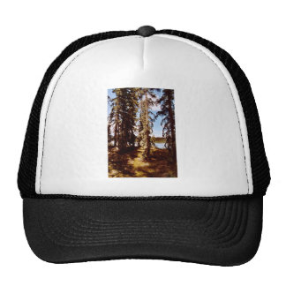 Boreal forest at Scoter Lake Trucker Hat