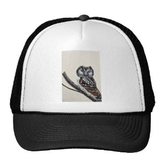Boreal owl hat