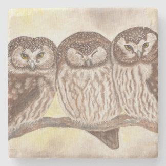 Boreal Owls coaster Stone Coaster