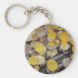 boreas pass aspens key ring