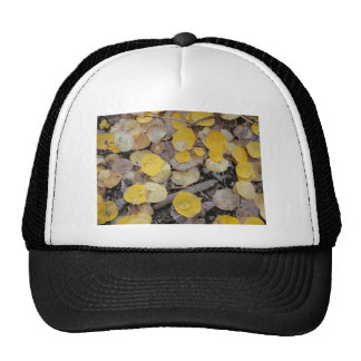 boreas pass aspens trucker hats
