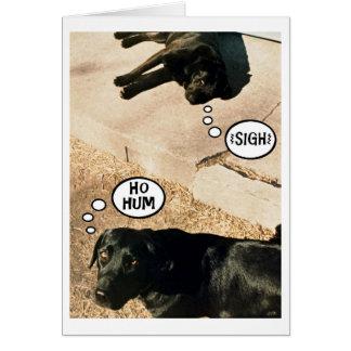 Bored doggies - We Miss You Greeting Card