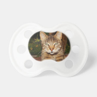 Bored Kitty Cat BooginHead Pacifier