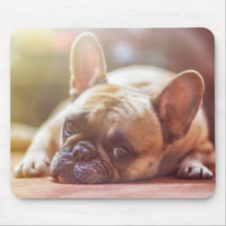 Bored Puppy Child Mouse Pad