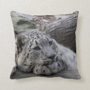 Snow Leopard Cub Throw Pillow Cases