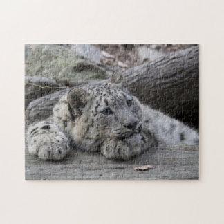 Bored Snow Leopard Cub Jigsaw Puzzle