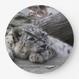 Bored Snow Leopard Cub Large Clock