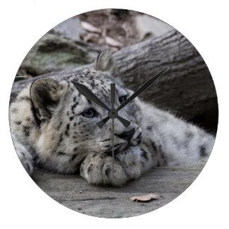 Bored Snow Leopard Cub Wallclocks