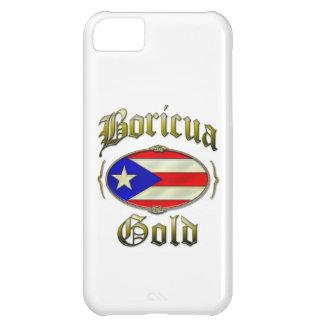 Boricua Gold iPhone 5C Cases