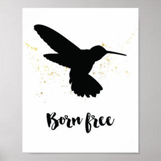 """""""Born free"""" hummingbird print"""