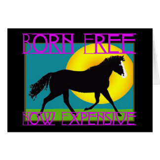 Born Free - Now Expensive Card