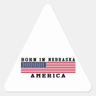 Born In Nebraska Triangle Sticker