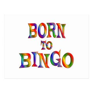 Born to BINGO Post Card