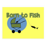 Born To Fish Postcards