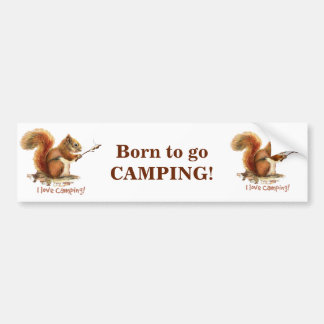 BORN TO GO CAMPING Fun Squirrel Cute Animal Quote Bumper Sticker