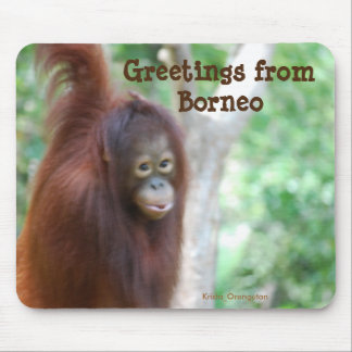 Borneo Jungle Travel Mouse Mat