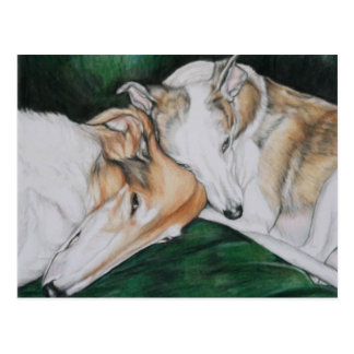 Boroi and Whippet Dlog Art Postcard