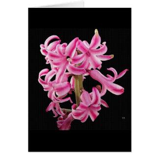 Borrowed Flowers Greeting Cards