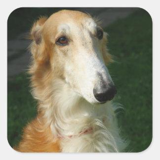 Borzoi dog beautiful photo dog stickers