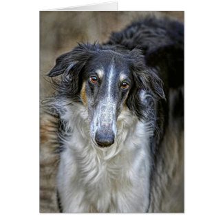 Borzoi Rescue Dog Card