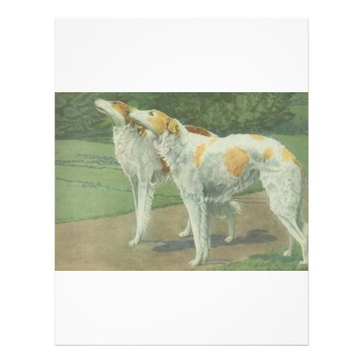 Borzoi (Russian Wolfhound) Full Color Flyer