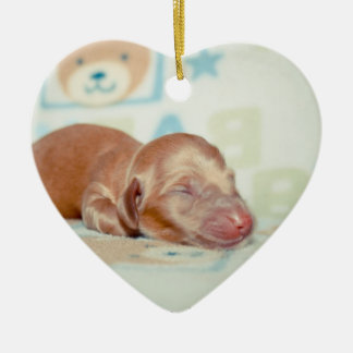 Boscoe Newborn-Lovebugdoxies puppy keepsake Christmas Ornament