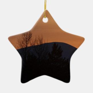 BOSI Boreal Silhouette Ceramic Star Decoration