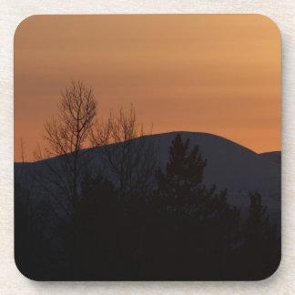 BOSI Boreal Silhouette Coaster