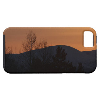 BOSI Boreal Silhouette Tough iPhone 5 Case