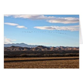 Bosque del Apache, New Mexico Greeting Card