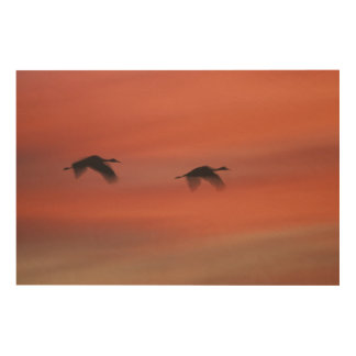 Bosque del Apache Wildlife Refuge | New Mexico Wood Wall Art